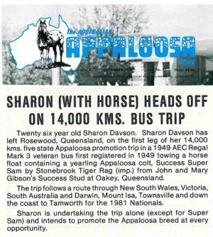 1980 - 12 Dec - Australian Appaloosa News 1240x900