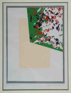 1974 Reflection Silk Screen Print On Paper